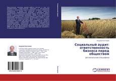 Bookcover of Социальный аудит: ответственность бизнеса перед обществом