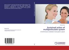 Bookcover of Sustained action of multiparticulate system