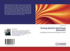 Bookcover of Testing Optimal Multistage Relaxation