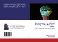 Bookcover of Accomodation of cultural diversity within Television sector