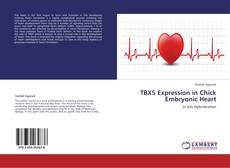 Bookcover of TBX5 Expression in Chick Embryonic Heart