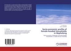 Bookcover of Socio-economic profile of female-headed households in Bophelong