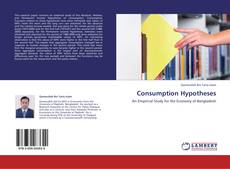 Borítókép a  Consumption Hypotheses - hoz
