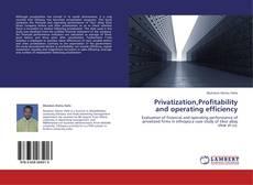 Borítókép a  Privatization,Profitability and operating efficiency - hoz