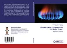 Bookcover of Downdraft Gasification of Oil Palm Frond