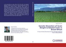 Genetic Dissection of Grain Weight & Related Traits in Bread Wheat kitap kapağı