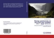 Белое движение на юге России (ноябрь 1917 - май 1919 гг.)的封面