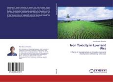 Bookcover of Iron Toxicity in Lowland Rice