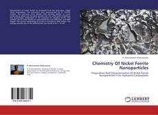 Chemistry Of Nickel Ferrite Nanoparticles的封面