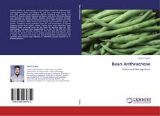 Bookcover of Bean Anthracnose