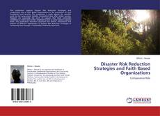 Bookcover of Disaster Risk Reduction Strategies and Faith Based Organizations