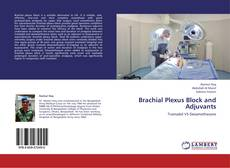 Bookcover of Brachial Plexus Block and Adjuvants