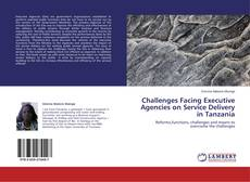 Bookcover of Challenges Facing Executive Agencies on Service Delivery in Tanzania