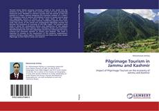 Couverture de Pilgrimage Tourism in Jammu and Kashmir