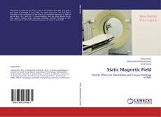 Bookcover of Static Magnetic Field