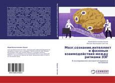Bookcover of Мозг,сознание,интеллект и фазовые взаимодействия между ритмами ЭЭГ