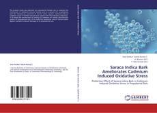 Copertina di Saraca Indica Bark Ameliorates Cadmium Induced Oxidative Stress