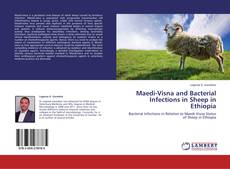 Capa do livro de Maedi-Visna and Bacterial Infections in Sheep in Ethiopia