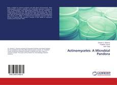 Copertina di Actinomycetes: A Microbial Pandora