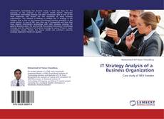 Capa do livro de IT Strategy Analysis of a   Business Organization