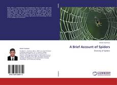 Bookcover of A Brief Account of Spiders