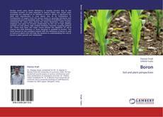 Bookcover of Boron