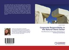 Corporate Responsibility in the Natural Stone Sector的封面