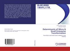 Bookcover of Determinants of Micro & Small Enterprise Transformation