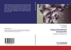 Portada del libro de Polyaniline/MnO2 Composites