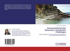 Copertina di Unconventional Gas Resources: Investment Challenges