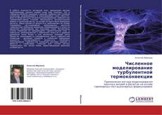 Buchcover von Численное моделирование турбулентной термоконвекции
