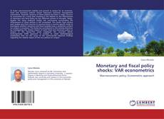 Monetary and fiscal policy shocks: VAR econometrics kitap kapağı