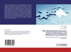 Borítókép a  The Relationship between Internal Branding and Affective Commitment - hoz