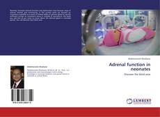 Bookcover of Adrenal function in neonates