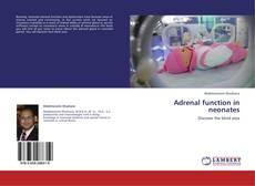 Couverture de Adrenal function in neonates