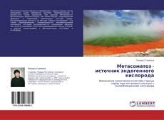 Couverture de Метасоматоз - источник эндогенного кислорода