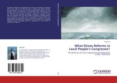 Buchcover von What Drives Reforms in Local People's Congresses?