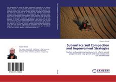 Bookcover of Subsurface Soil Compaction and Improvement Strategies