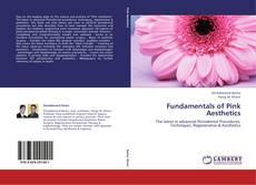 Fundamentals of Pink Aesthetics kitap kapağı