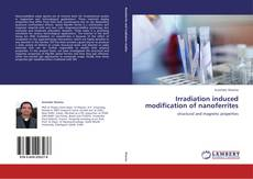 Bookcover of Irradiation induced modification of nanoferrites