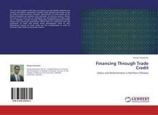 Financing Through Trade Credit kitap kapağı