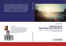 Малые реки Оренбургской области kitap kapağı