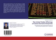 Bookcover of The Initial Public Offerings of State-Owned Enterprises