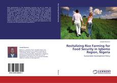 Bookcover of Revitalizing Rice Farming for Food Security in Igbemo Region, Nigeria