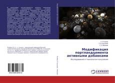 Bookcover of Модификация портландцемента активными добавками