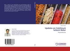 Copertina di Updates on Colchicum luteum Baker