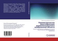 Portada del libro de Параметрическая идентификация радиолокационного изображения объекта