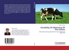 Possibility Of Obtaining Of The Cheese的封面