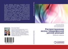 Bookcover of Распространение волны твердофазной цепной реакции