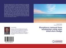 Portada del libro de Phosphorus removal from wastewater using oven dried alum sludge